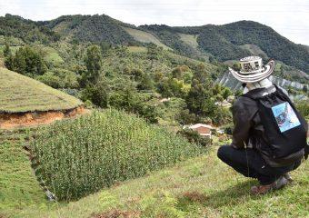 Proceso individual De Regreso a Casa en medio del aislamiento por Covid – 19 en las veredas de Colmenas, Piedras, San José y área urbana del municipio de La Ceja